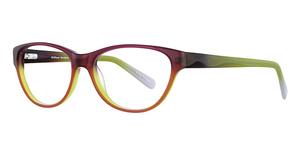 Wildflower Dandelion Glasses