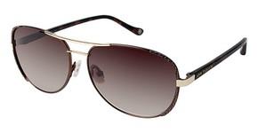 Ann Taylor AT507 Sunglasses