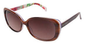 Ted Baker B564 Brown Purple
