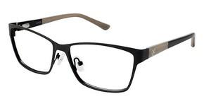 Ann Taylor AT205 Eyeglasses