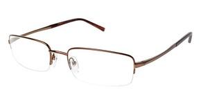 A&A Optical Matador Brown