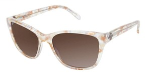 Ted Baker B563 Sunglasses