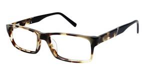 TRU Trussardi TR 12756 Glasses