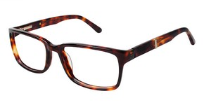 Perry Ellis PE 334 Prescription Glasses