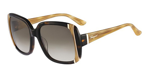 Salvatore Ferragamo SF672S Sunglasses