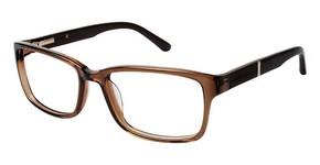 Perry Ellis PE 334 Glasses