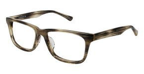 Vision's Vision's 208A Olive Horn