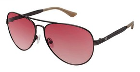 Ann Taylor AT508 Sunglasses