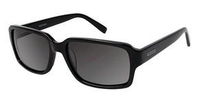 TRU Trussardi TR 12937 Sunglasses
