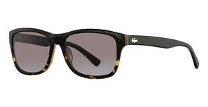 Lacoste L709S (001) Black/Havana Gradient