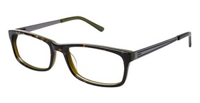 A&A Optical Commodore Tort/Green