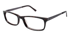 A&A Optical Commodore Tort/Brown