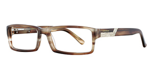 Cubavera CV 141 Glasses