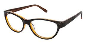 Jill Stuart JS 310 Glasses