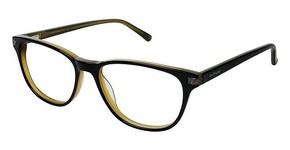 Jill Stuart JS 312 Glasses