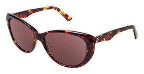 Nicole Miller MONROE Sunglasses