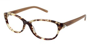 A&A Optical Ashley Tortoise