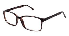 New Globe M424 Eyeglasses