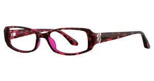 Avalon Eyewear 5029 PURPLE/TORTOISE