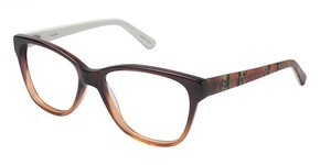Nicole Miller Albany Brown Fade  C01