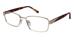 Perry Ellis PE 341 Eyeglasses