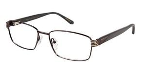 Perry Ellis PE 341 Glasses