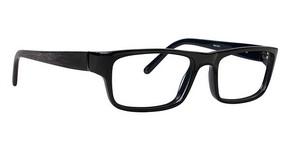 Ducks Unlimited Laramie Glasses