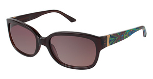 Brendel 916001 Sunglasses