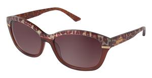 Brendel 916006 Sunglasses