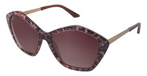 Brendel 916007 Sunglasses