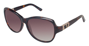 Ann Taylor AT0413S Sunglasses