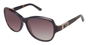 Ann Taylor AT0413S Sunglasses
