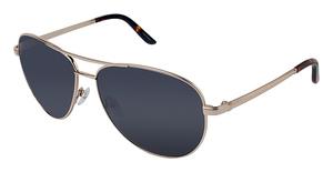 Ann Taylor AT1213S Sunglasses
