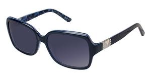 Ann Taylor AT0113S Sunglasses