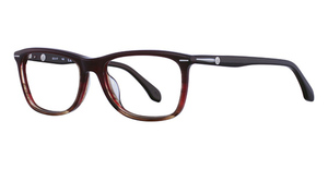 cK Calvin Klein cK5792 Glasses