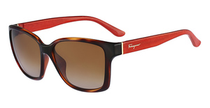 Salvatore Ferragamo SF716S Sunglasses