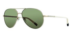 Gant GWS 8017 Sunglasses