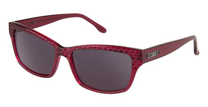 BCBG Max Azria Risky Sunglasses