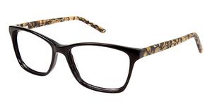 Junction City Cascade Park Eyeglasses