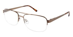 Puriti PT 309 Glasses