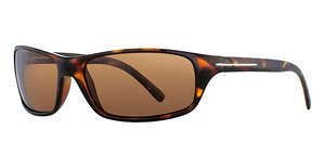 Serengeti Pisa Sunglasses