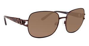 XOXO X2339 Sunglasses