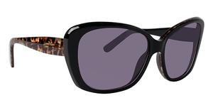 XOXO X2334 Sunglasses