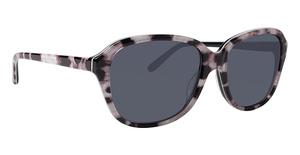 XOXO X2338 Sunglasses