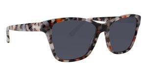 XOXO X2337 Sunglasses