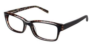 A&A Optical Longwood Eyeglasses