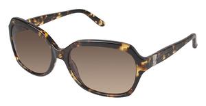 Nicole Miller Vanderbilt Sunglasses