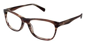 Ann Taylor AT317 Eyeglasses