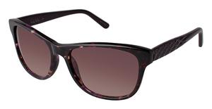 Nicole Miller Sutton Sunglasses