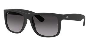 Ray Ban RB4165F Sunglasses
